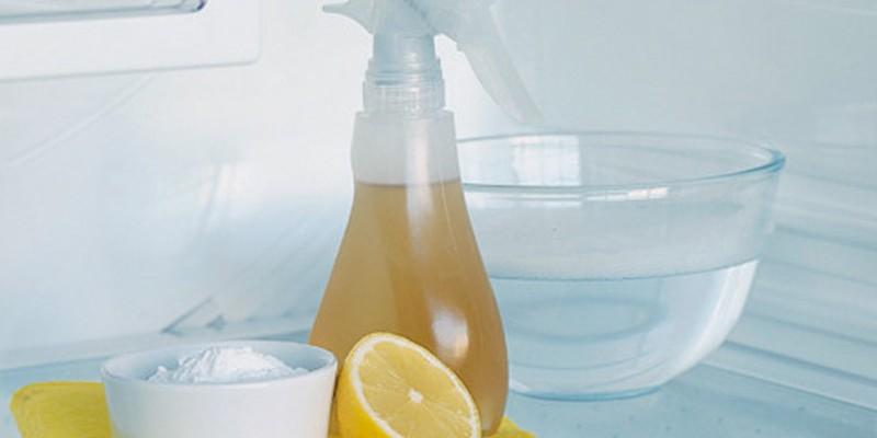 pulire con prodotti bio
